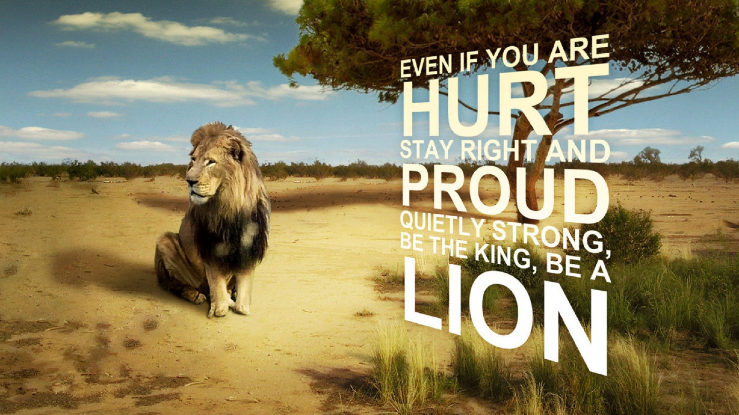 Hd Wallpapers Lion 1080p With Quote - HD Wallpaper