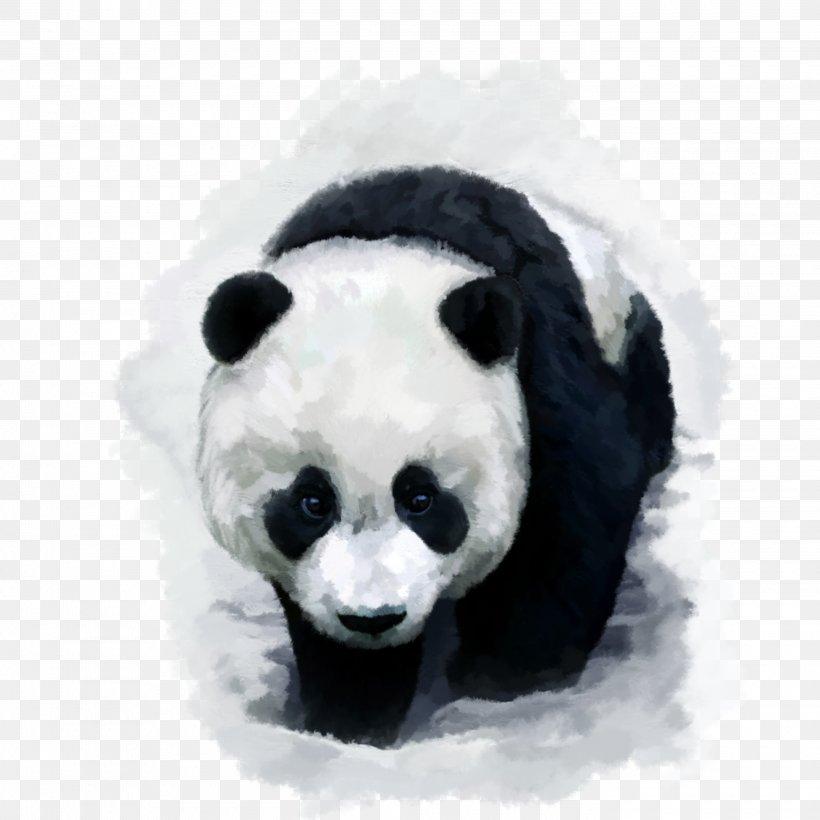 Giant Panda Bear Red Panda Desktop Wallpaper Baby Pandas, - Panda Bear Wallpaper For Iphone - HD Wallpaper