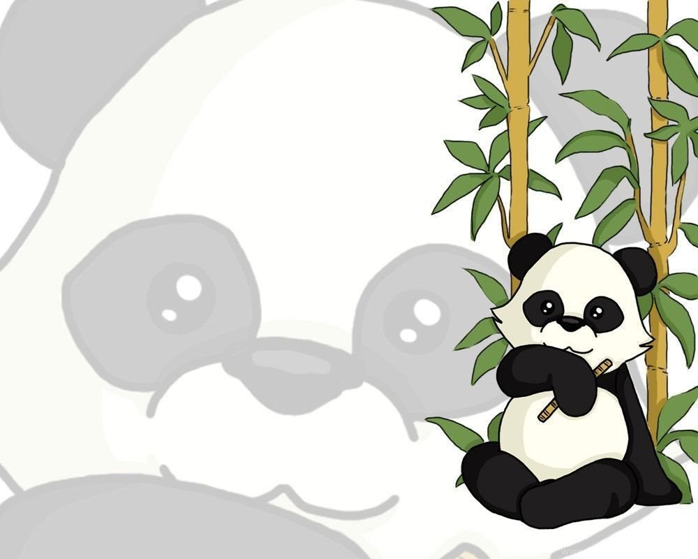 Background Kartun Panda - HD Wallpaper