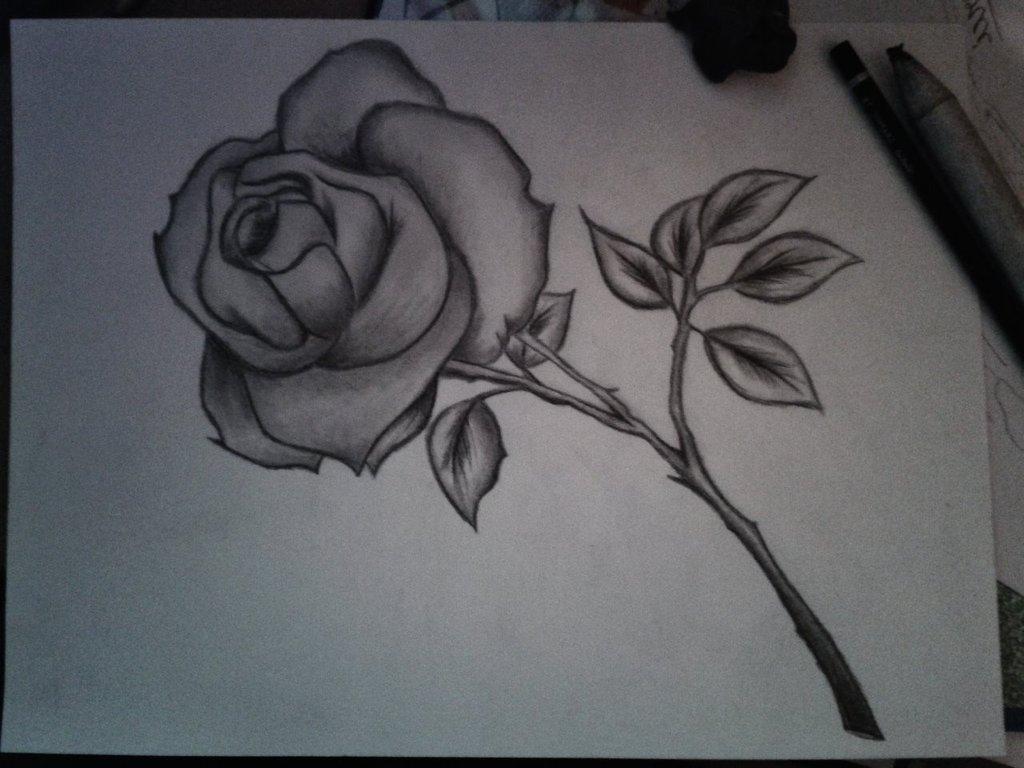 Flowers Pencil Sketch Art Pencil Art Flowers Flower - Flower Pencil Sketch Drawing - HD Wallpaper