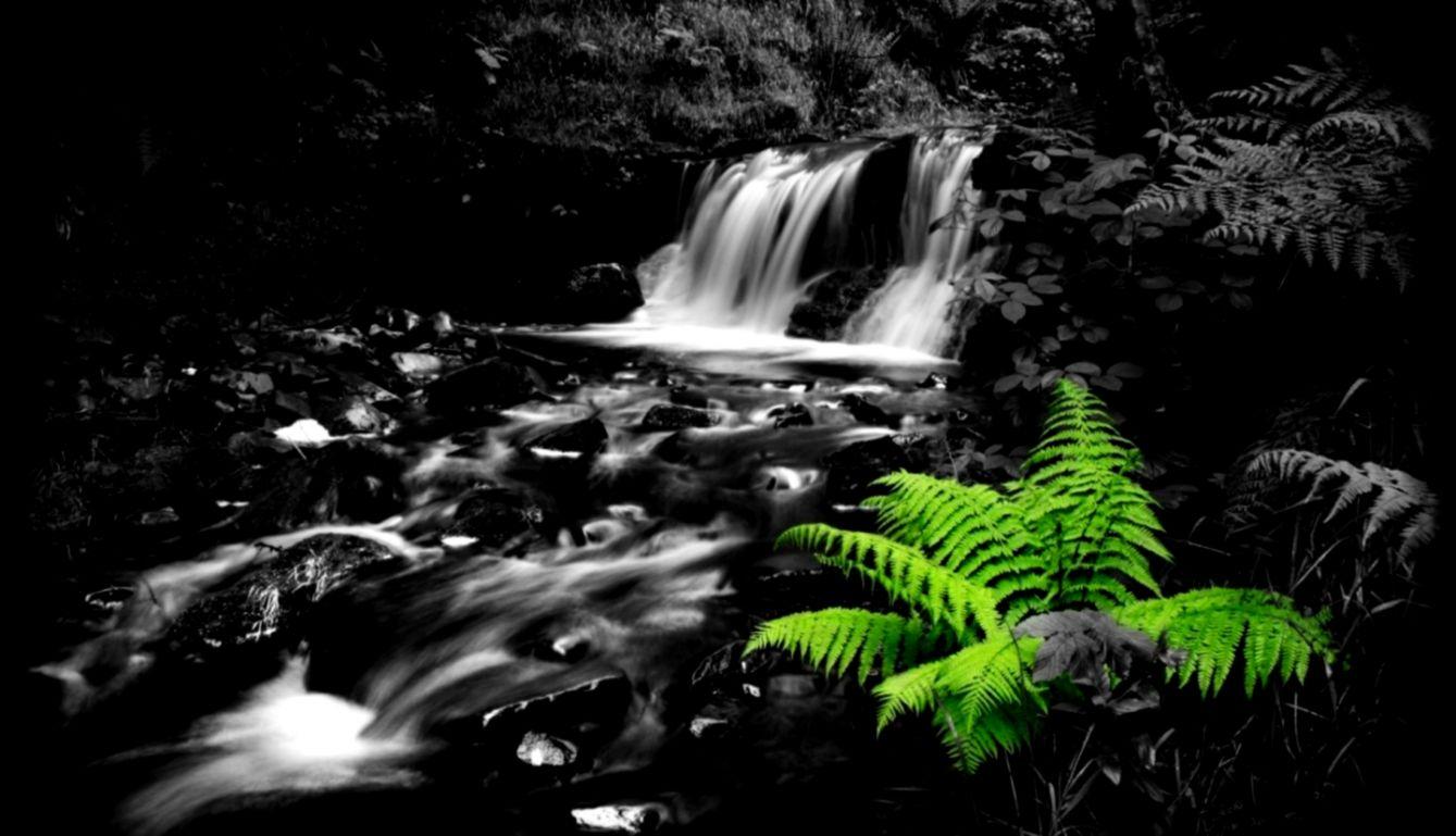 Other Beautiful White Water Green Black Full Hd 1080p - 1080p Black Nature Wallpaper Hd - HD Wallpaper