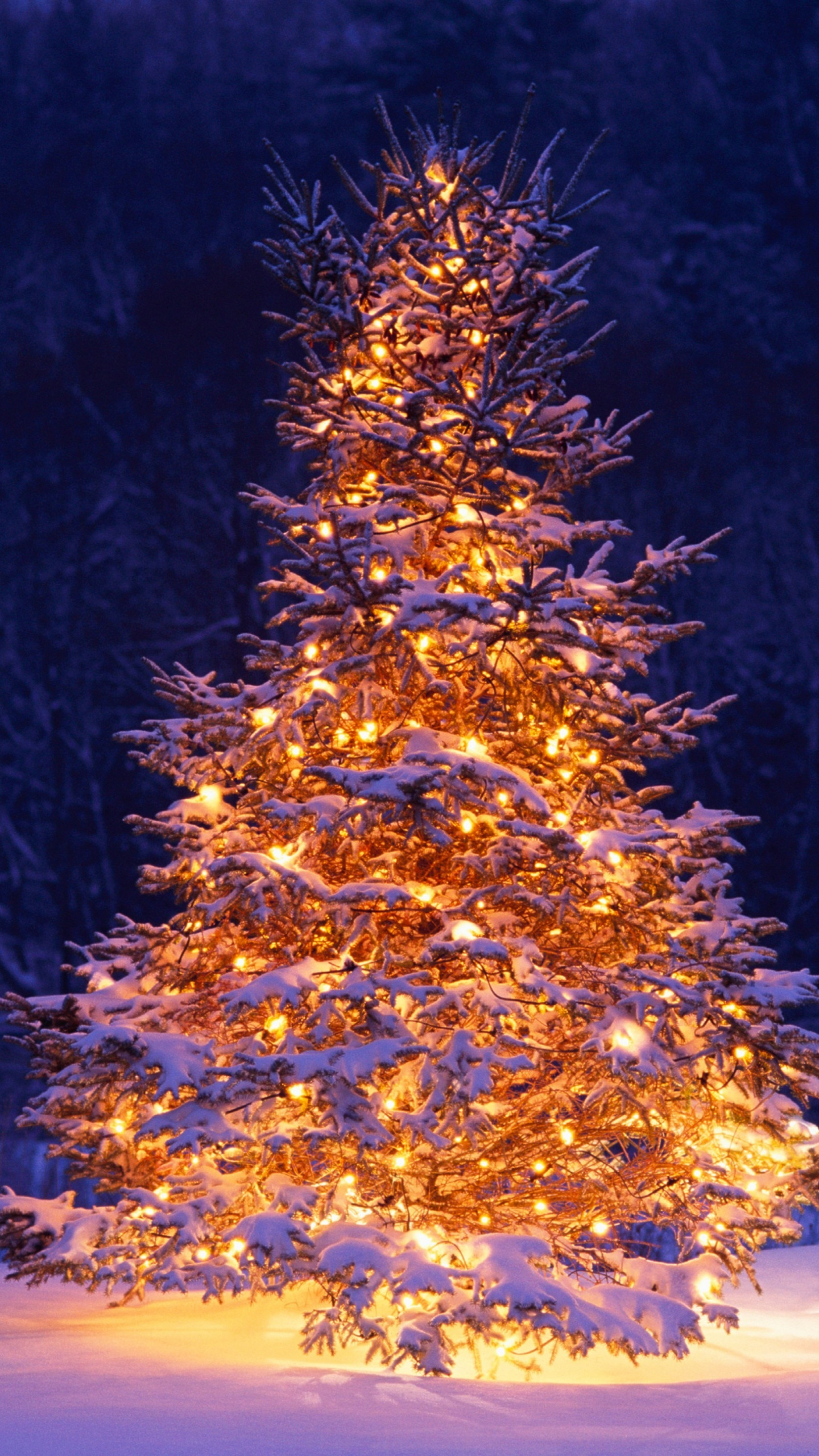 Christmas Tree, Chairs, Winter, Christmas, 2017, Holiday, - Christmas Tree Iphone Background - HD Wallpaper