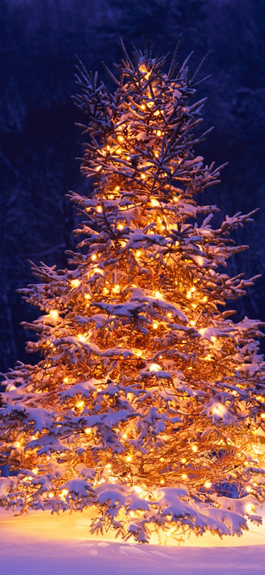 Christmas Tree Chairs Winter Christmas 2017 Holiday Christmas Winter Wonderland Scene 1125x2436 Wallpaper Teahub Io