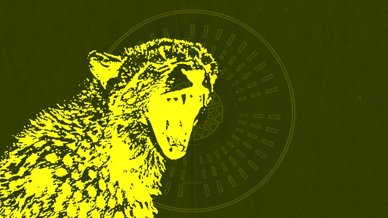 Pet Cheetah Twenty One Pilots - HD Wallpaper