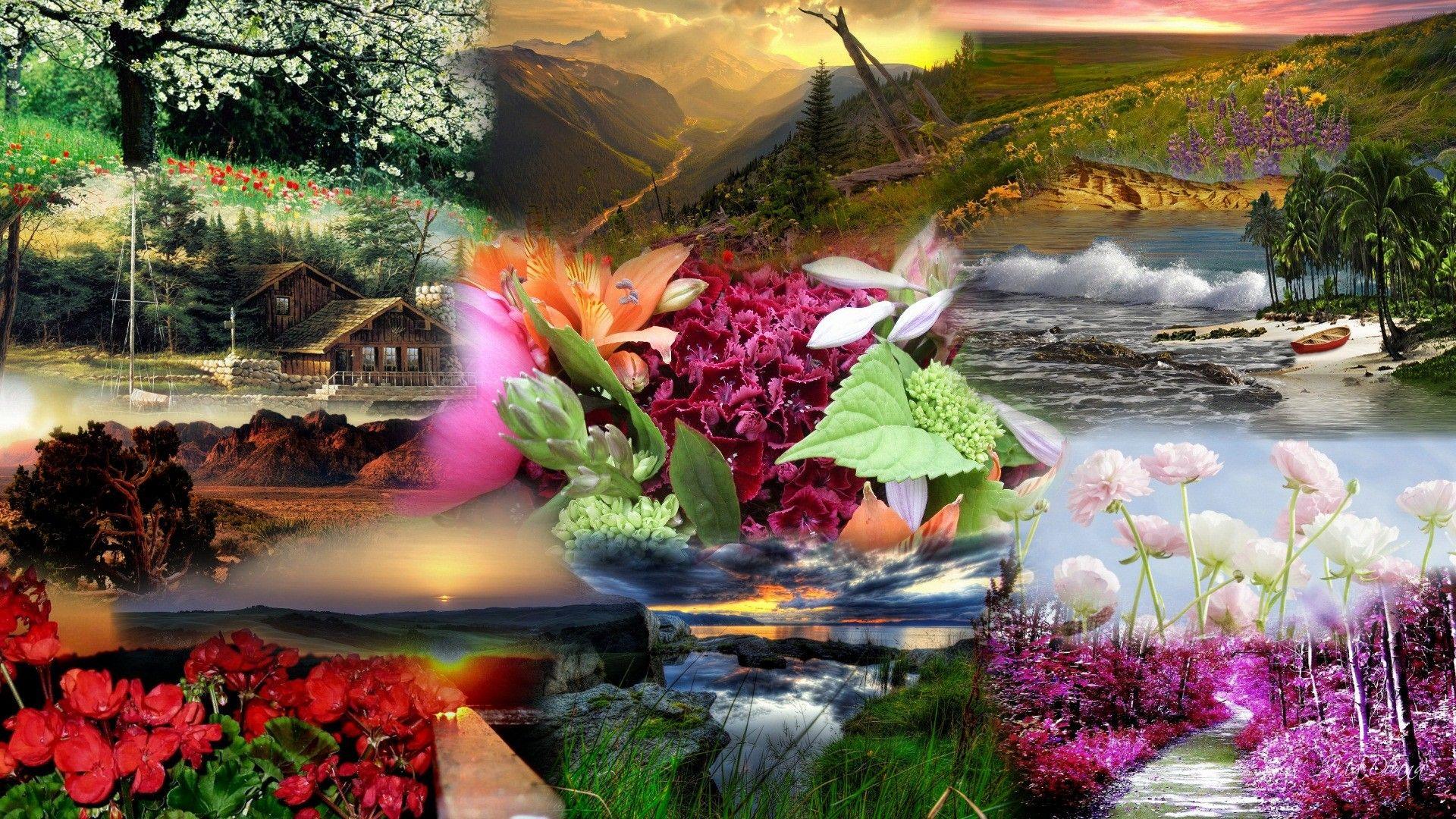 Most Beautiful Nature Widescreen High Definition Wallpaper - Desktop Background Beautiful Nature - HD Wallpaper