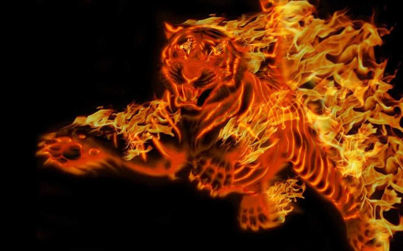 Cool Wallpaper Red Tiger 1280x800 Wallpaper Teahub Io