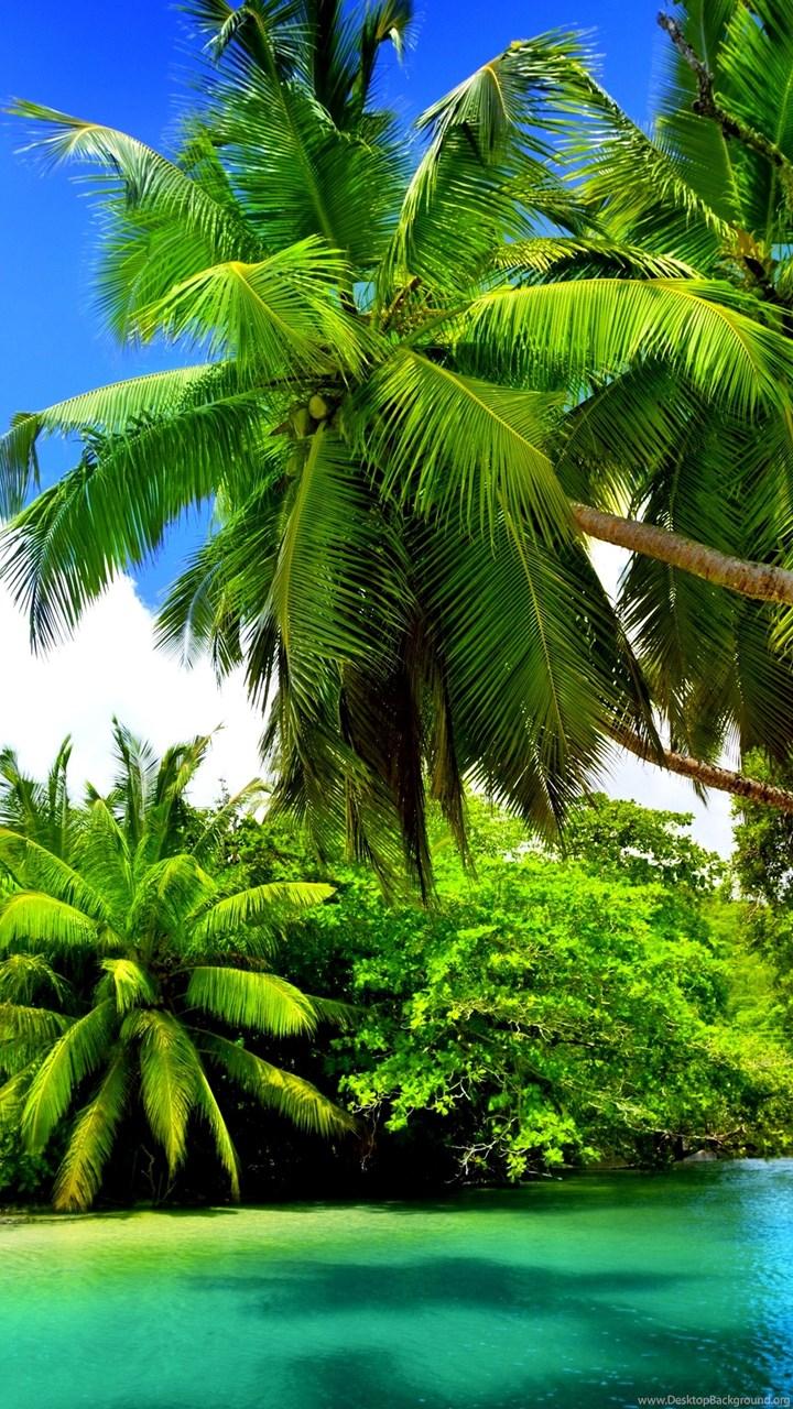Full Screen Wallpaper Hd Nature - HD Wallpaper