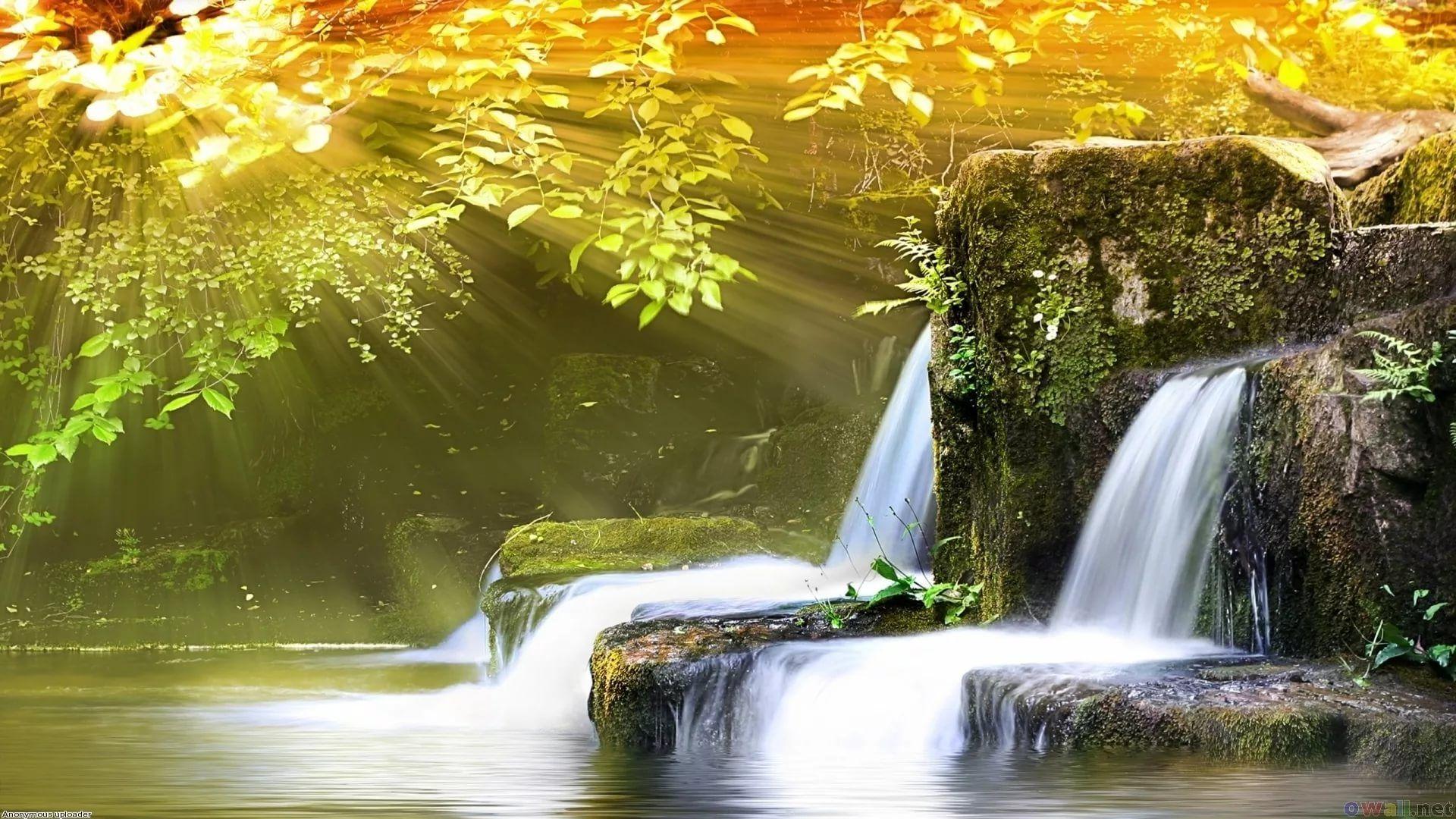 10d Full Hd Wallpaper For Laptop - Nature Background Images For Websites - HD Wallpaper