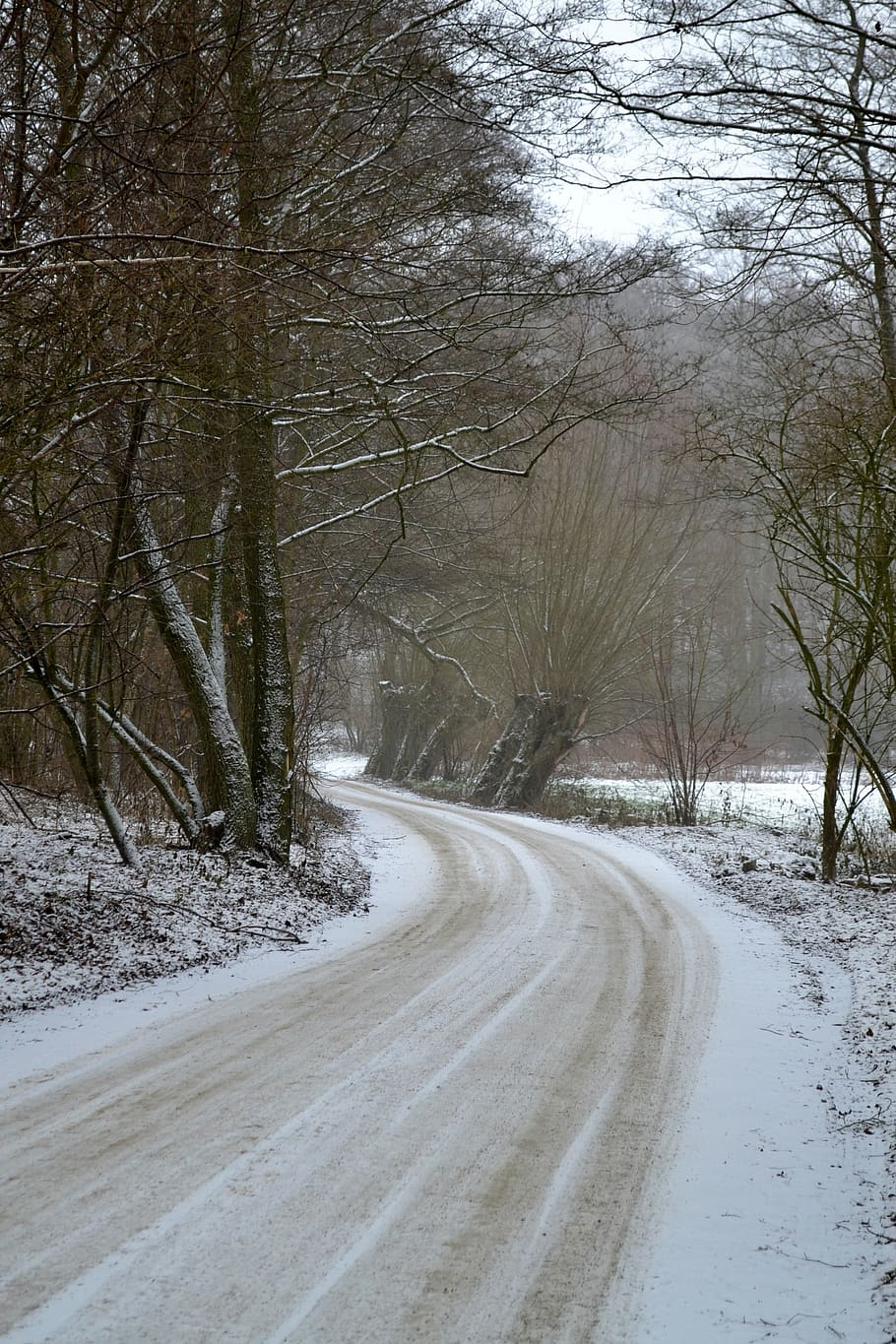 Winter, Snow, Landscape, Nature, Forest, The Path, - HD Wallpaper