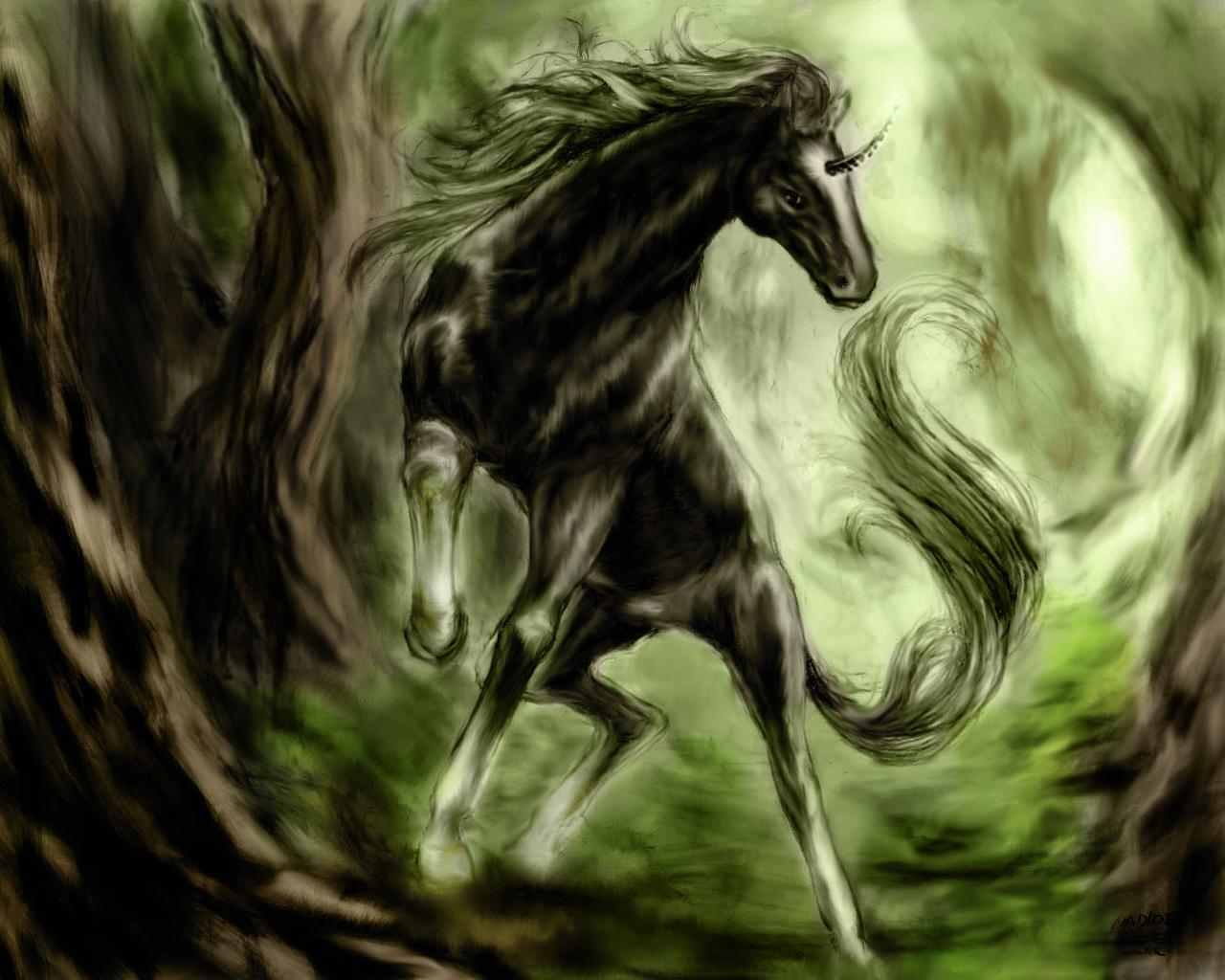 Anime Horse Fan Art 1280x1024 Wallpaper Teahub Io