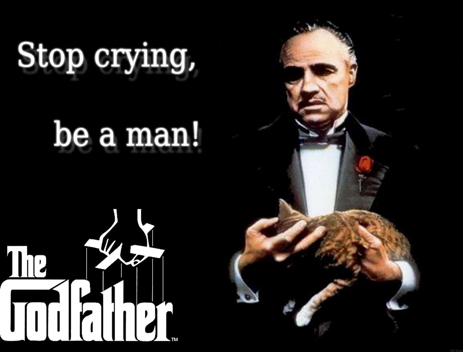 Memorable Quotes From The Godfather - Godfather Part 1 Poster - HD Wallpaper