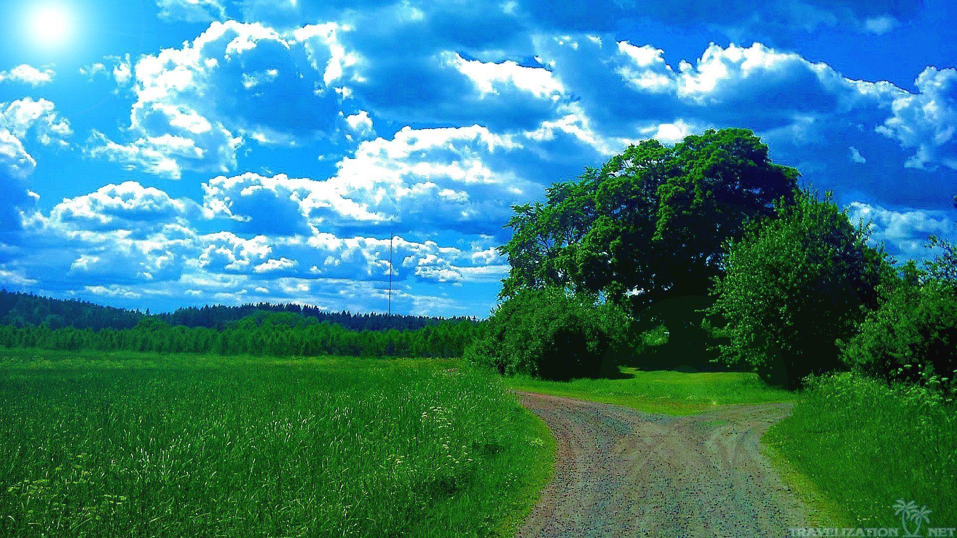Data-src /w/full/a/4/f/343047 - High Resolution Summer Nature Background Hd - HD Wallpaper