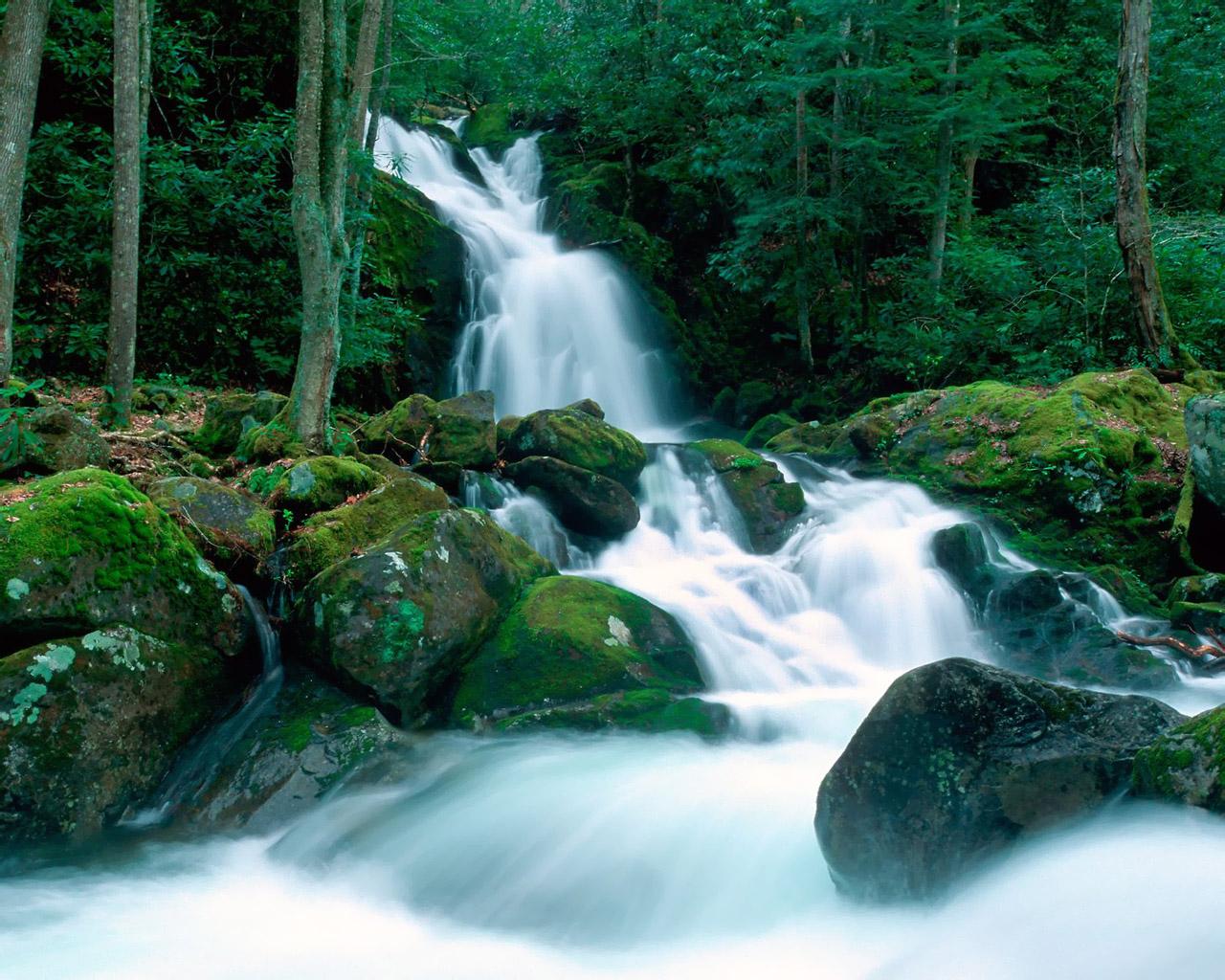 World Landscape Wallpapers 1280*1024 No - High Resolution Smoky Mountains - HD Wallpaper