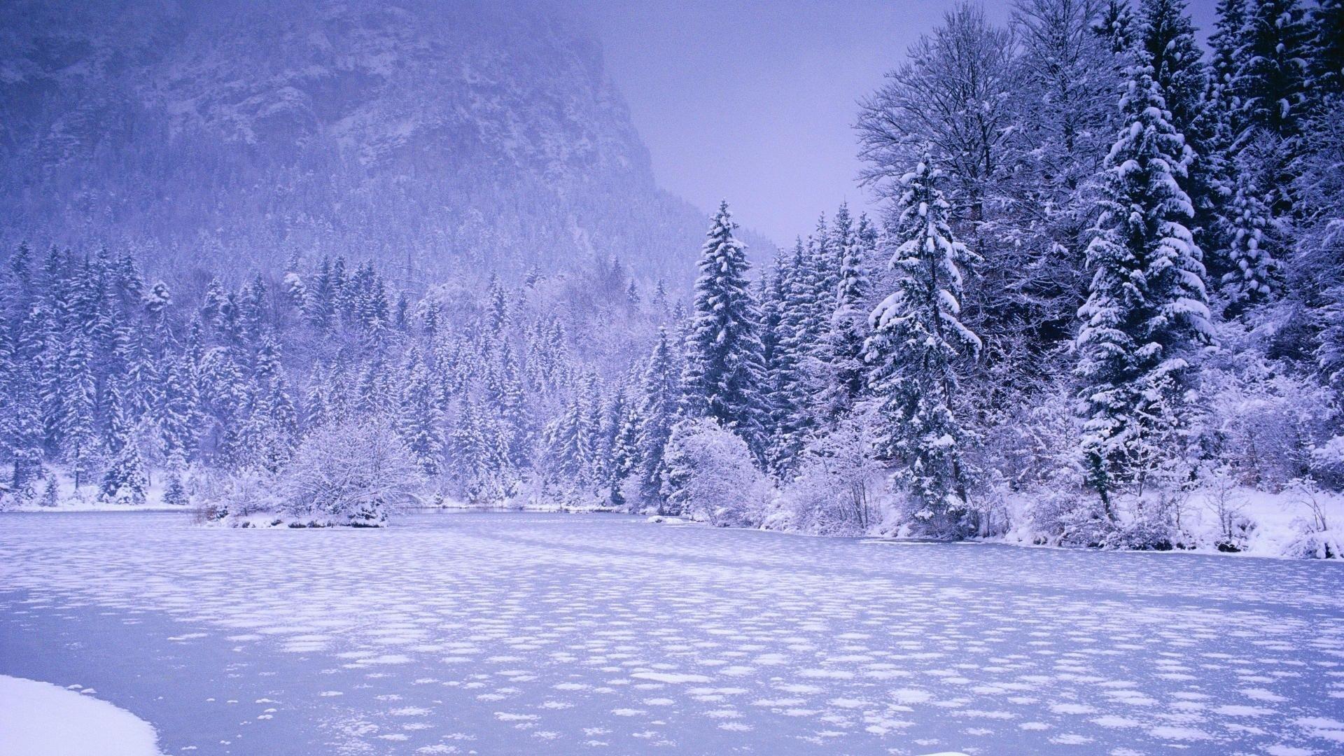 Nature Winter Wallpapers Hd 1080p Wallpaper Nature - Beautiful Anime Winter Background - HD Wallpaper