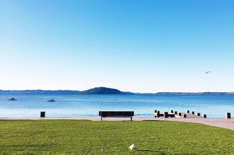 New Zealand, Rotorua, Lakefront Rotorua, Bench, Serene, - HD Wallpaper