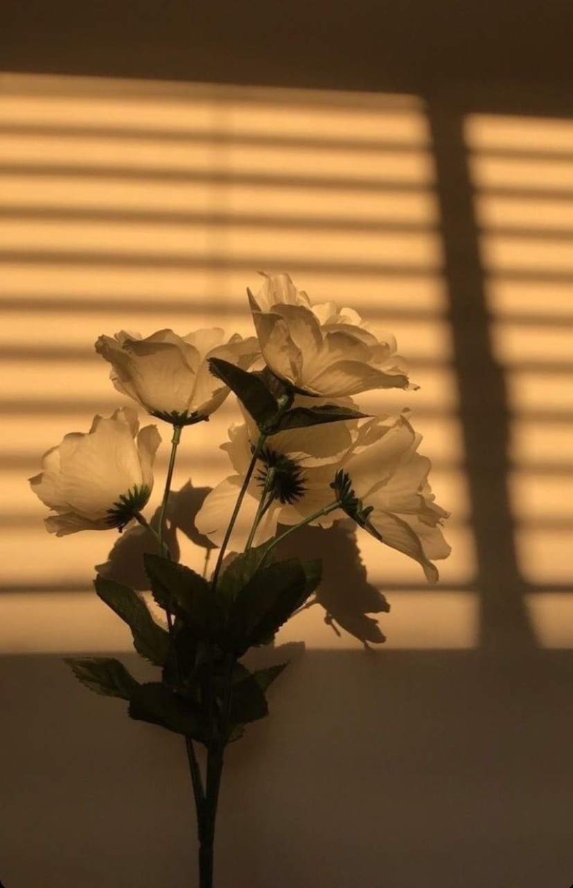 Flowers, Wallpaper, And Aesthetic Image - Light Brown Brown Aesthetic Background - HD Wallpaper