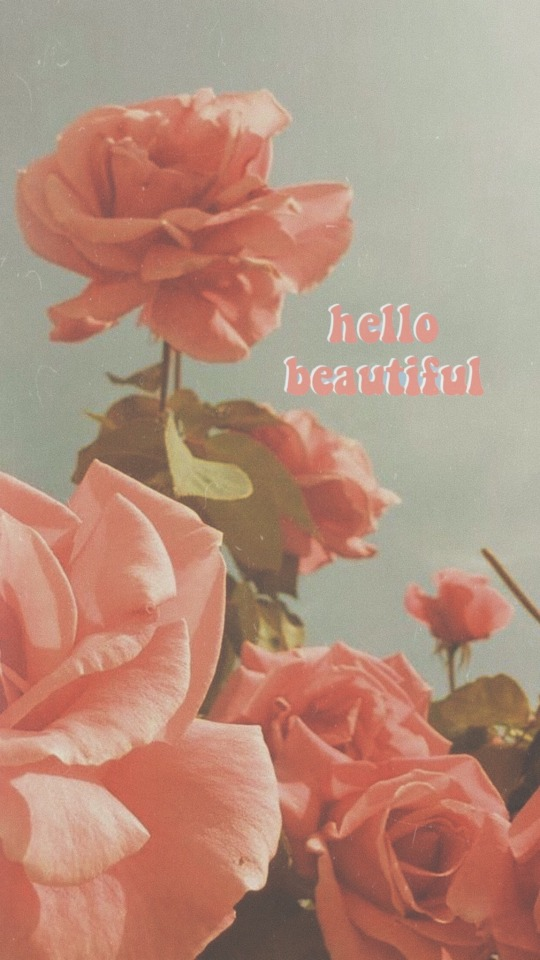 Image - Peach Aesthetic - HD Wallpaper