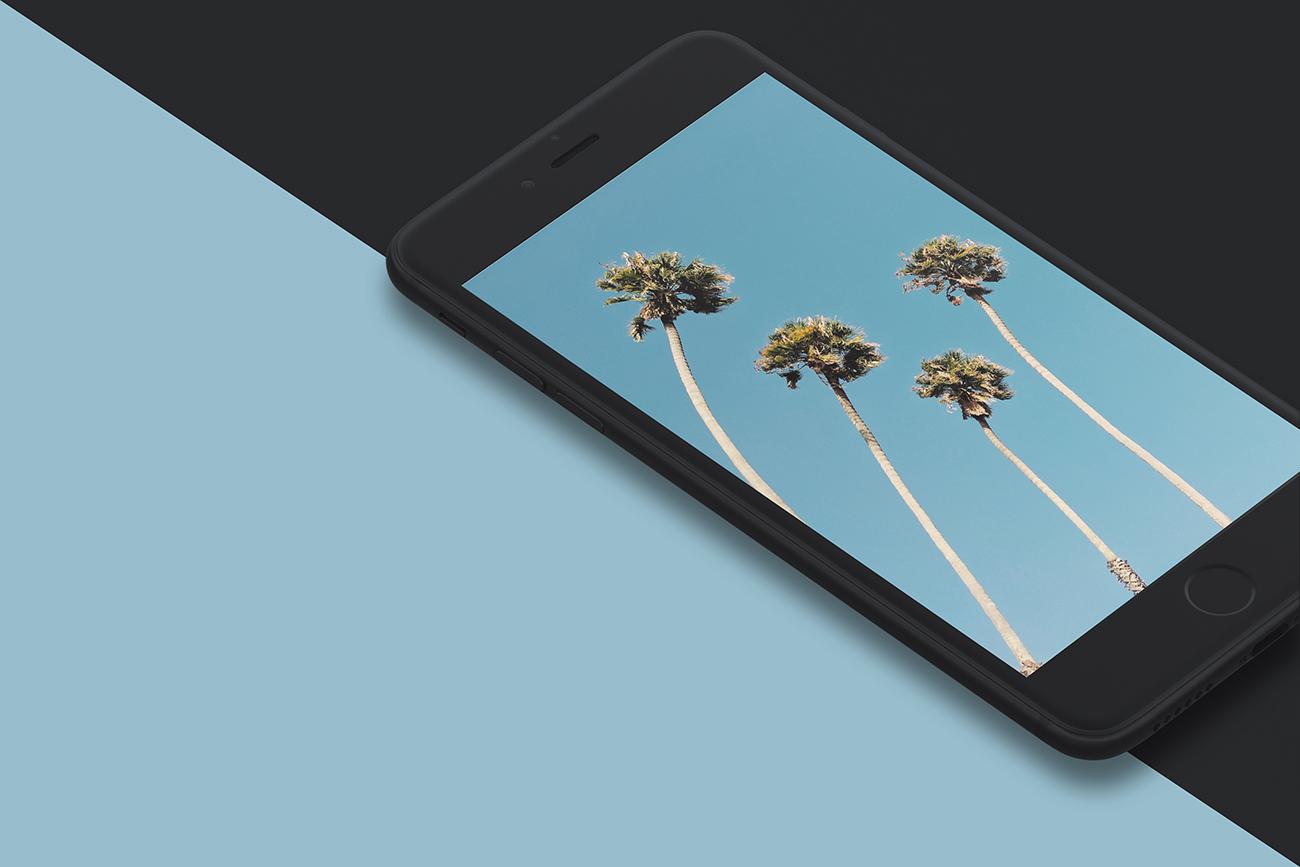Https - //www - Instagram - Com/abduzeedo/ - Palm Tree - HD Wallpaper
