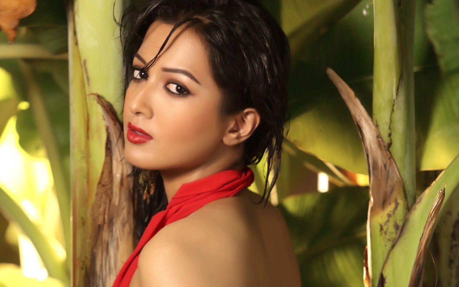 Free Download South Indian Actress Anushka Shetty Wallpapers - All South Indian Actresses - HD Wallpaper