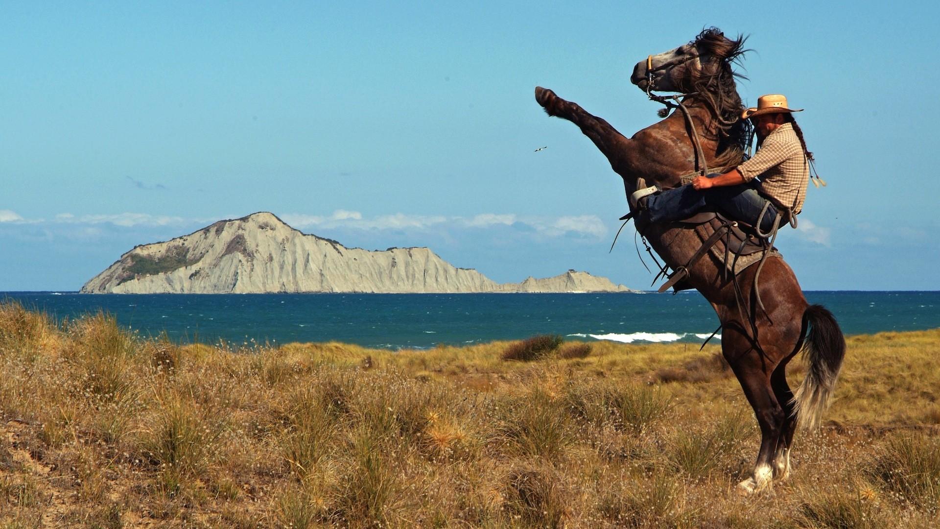 Incredible Ghost Rider Horse Wallpaper Te Maleficent Cowboy Hd 1920x1080 Wallpaper Teahub Io