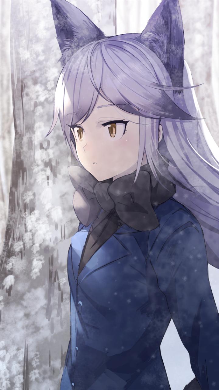 Kemono Friends Silver Fox Anime Girl - HD Wallpaper
