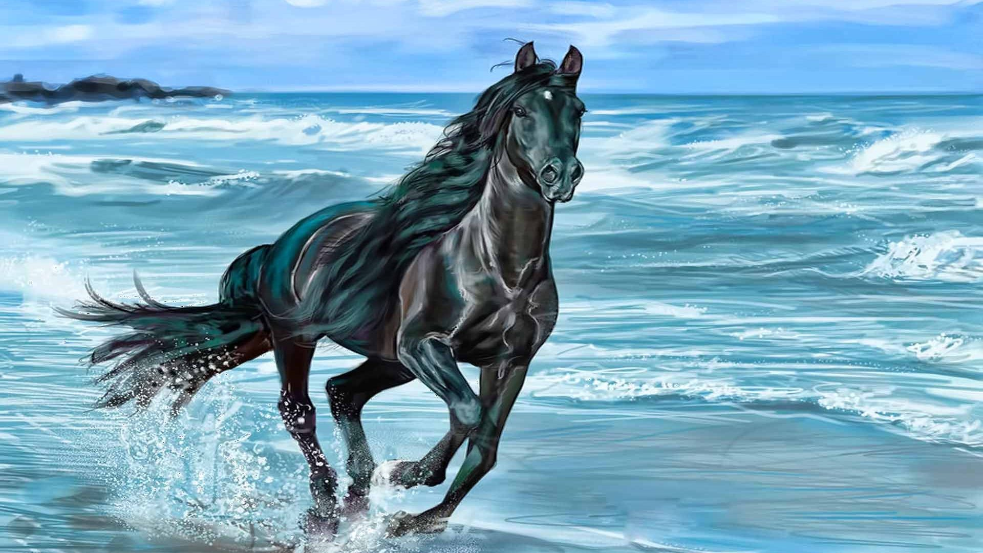 Black Horse Hd Picture Running Horse Wallpaper Desktop Background 1920x1080 Wallpaper Teahub Io