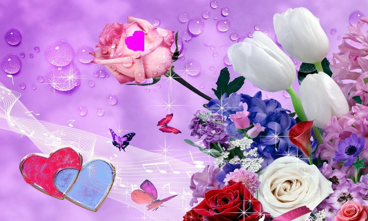 Beautiful Colorful Rose Flower - HD Wallpaper