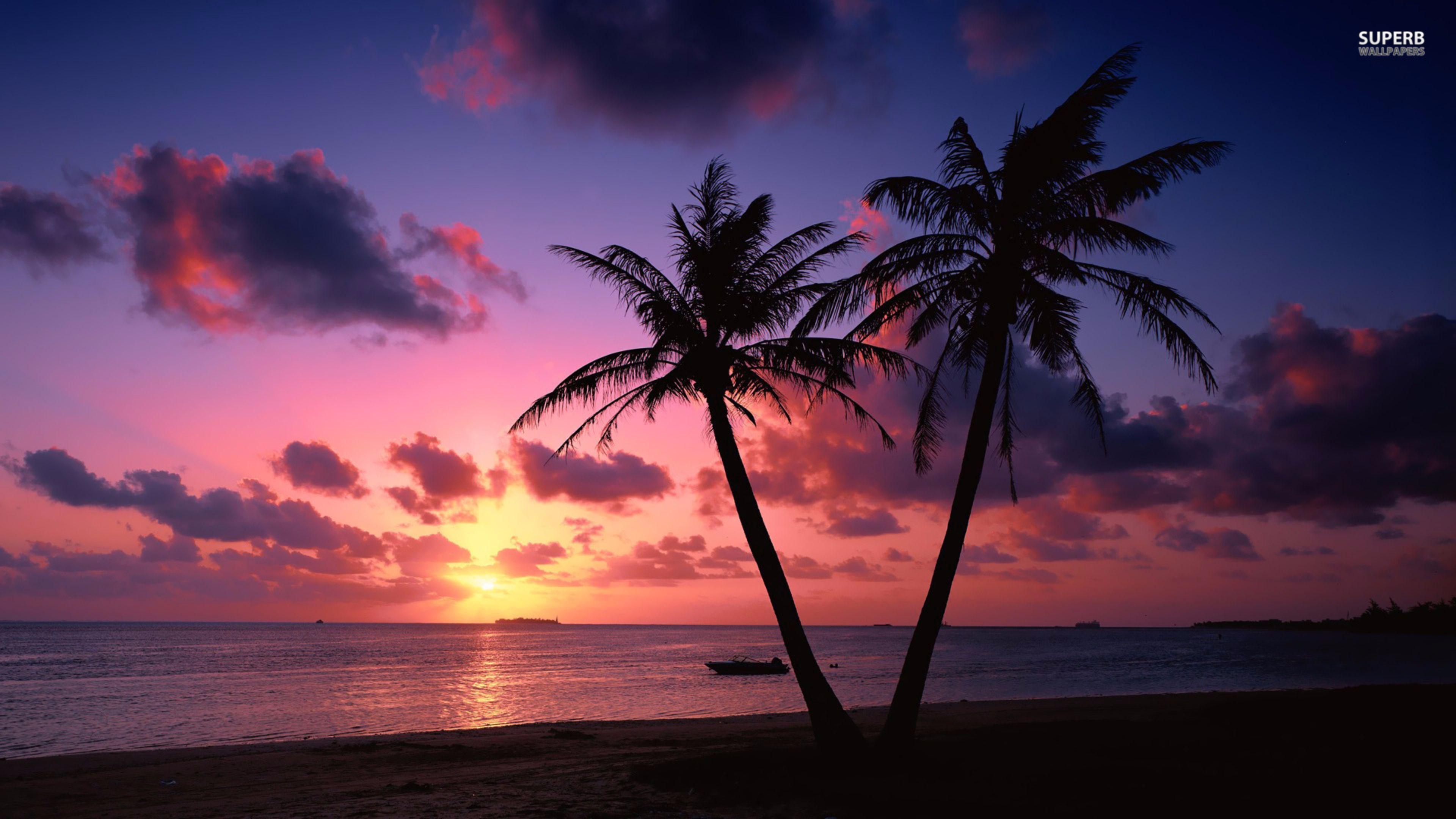 Sunset Tropical Beach Background - HD Wallpaper