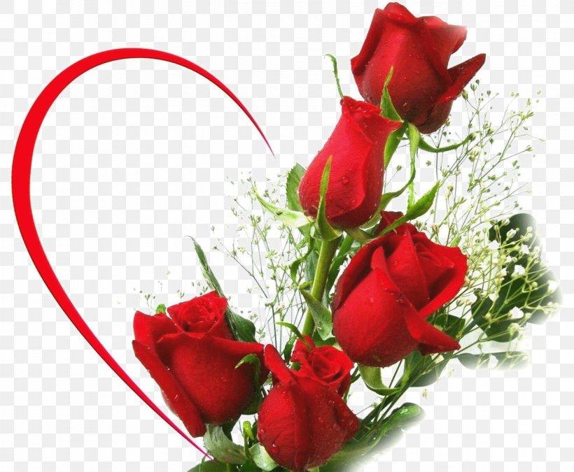 Rainbow Rose Flower Bouquet Desktop Wallpaper Png Rose Flowers Images Png 820x675 Wallpaper Teahub Io
