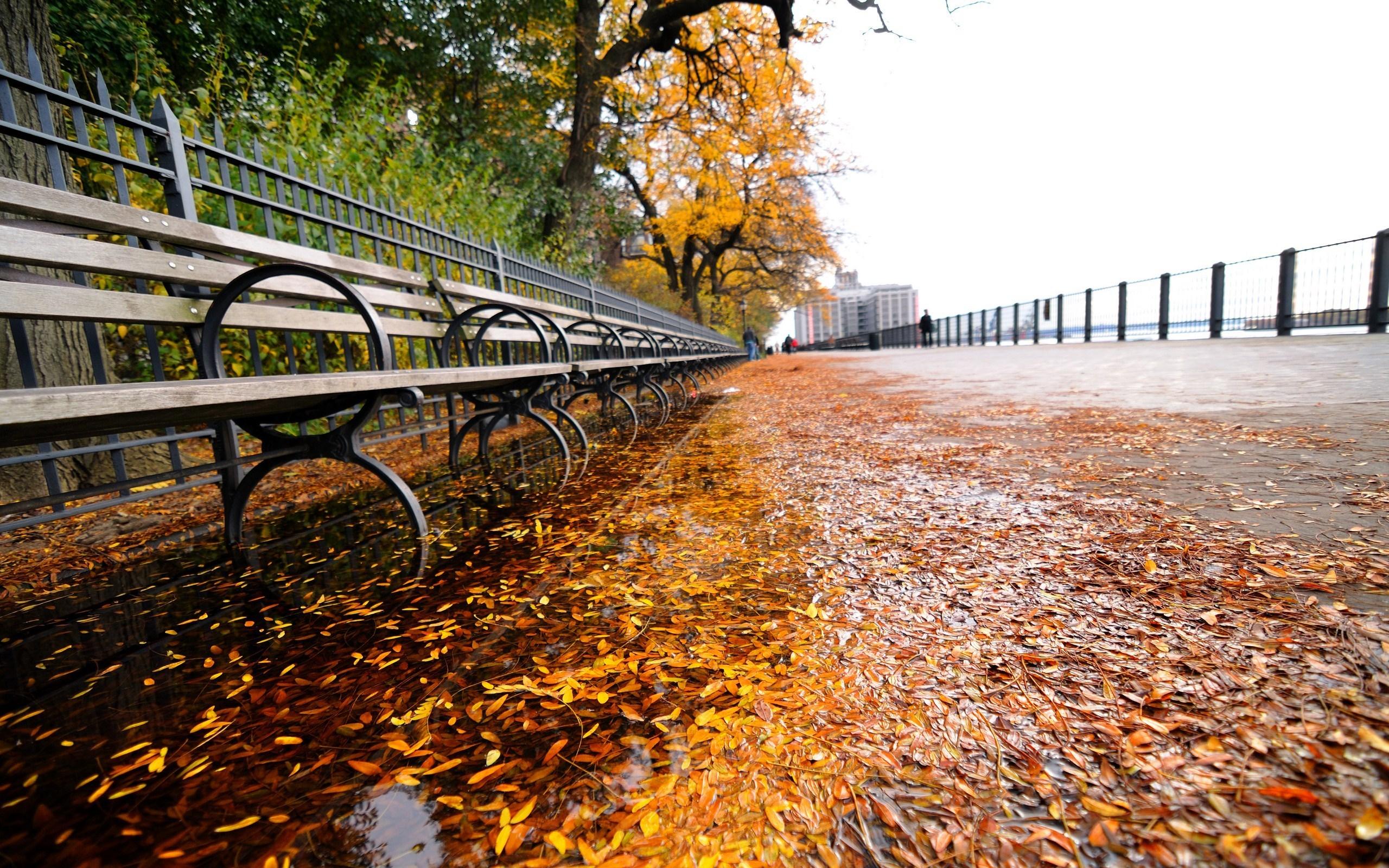 Fall Autumn In New York - HD Wallpaper