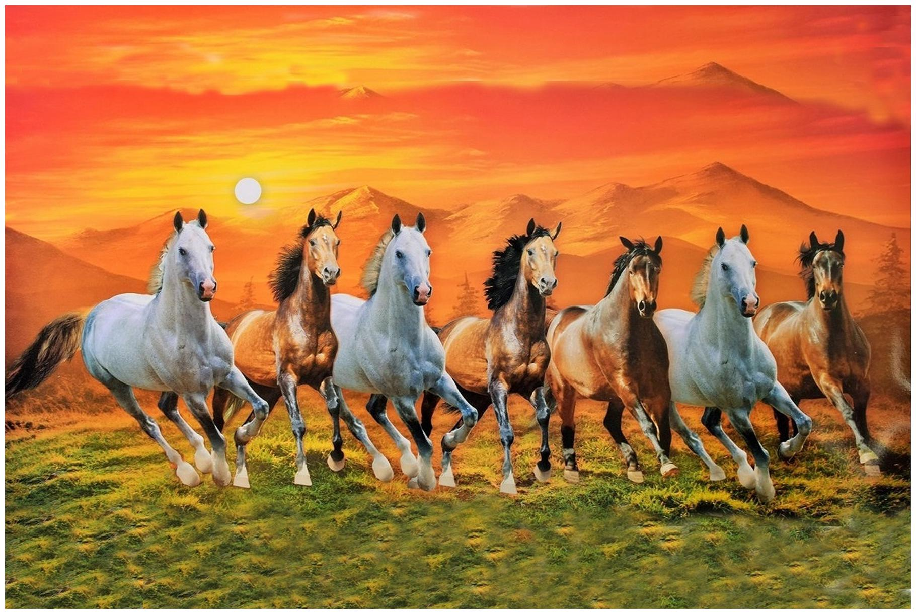 Running Horses With Frame 1820x1220 Wallpaper Teahub Io
