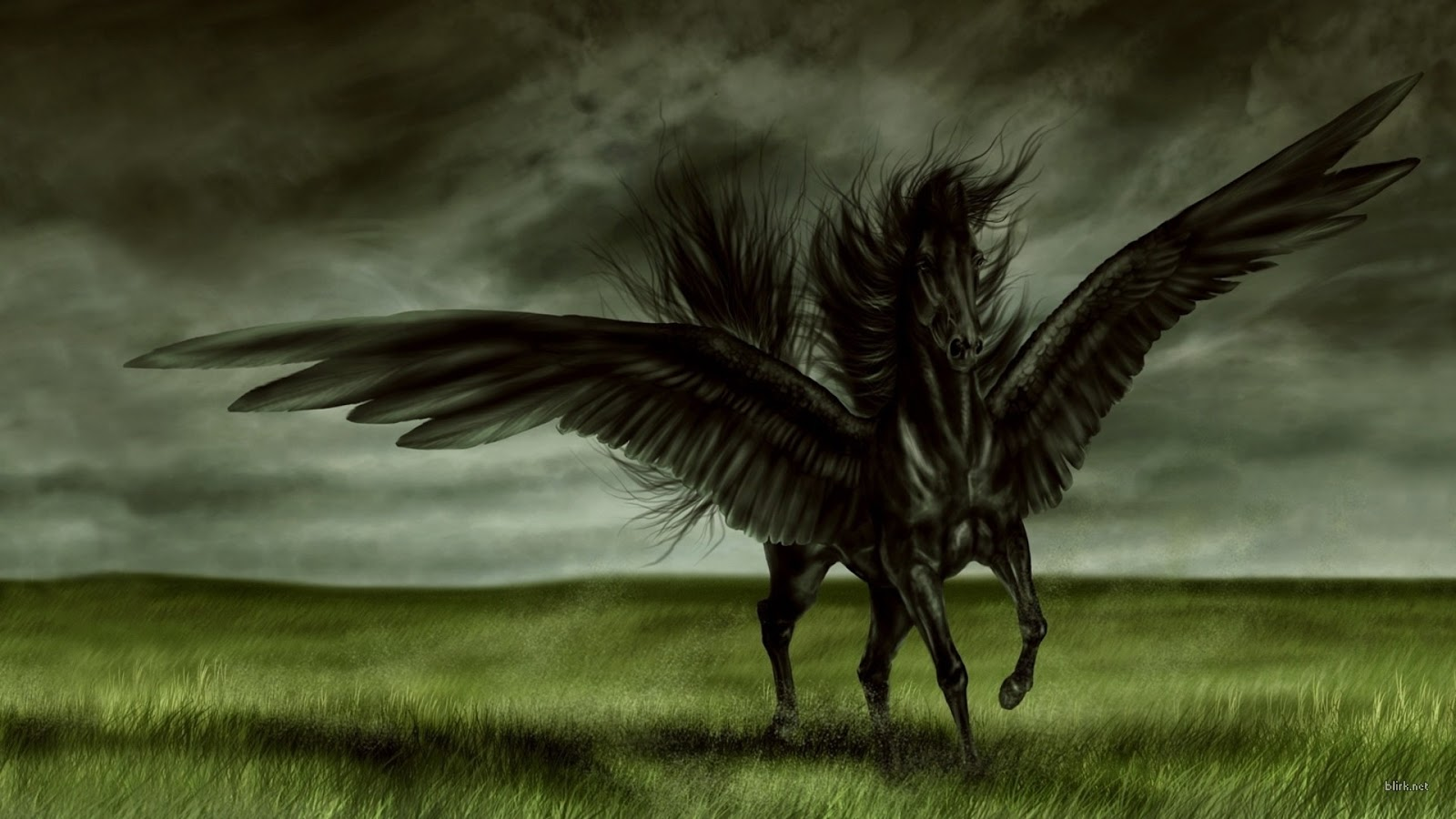 All Wallpapers Black Horse New Best Hd Wallpapers Black Horse 3d Wallpaper Hd 1600x900 Wallpaper Teahub Io