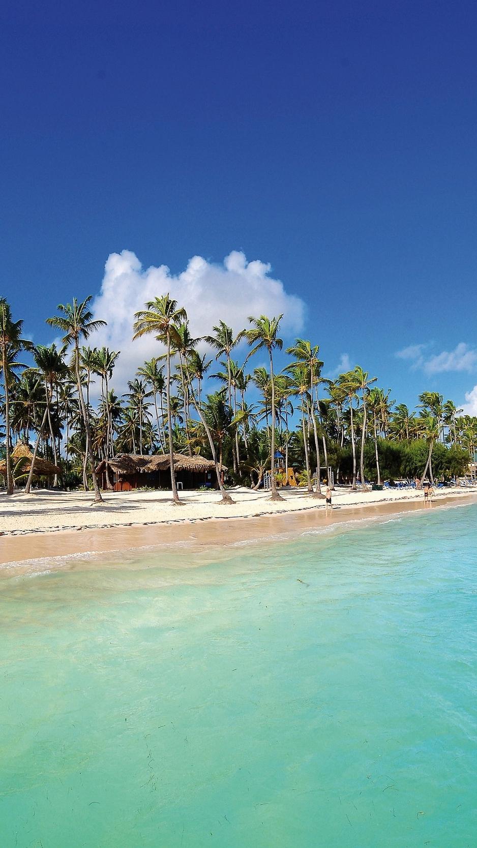 Iphone Wallpaper Beach Palm Trees - HD Wallpaper