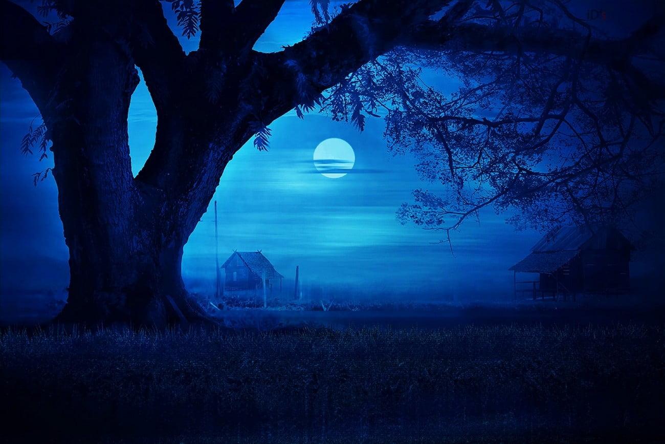 Blue And Black Moon Painting 1300x867 Wallpaper Teahub Io