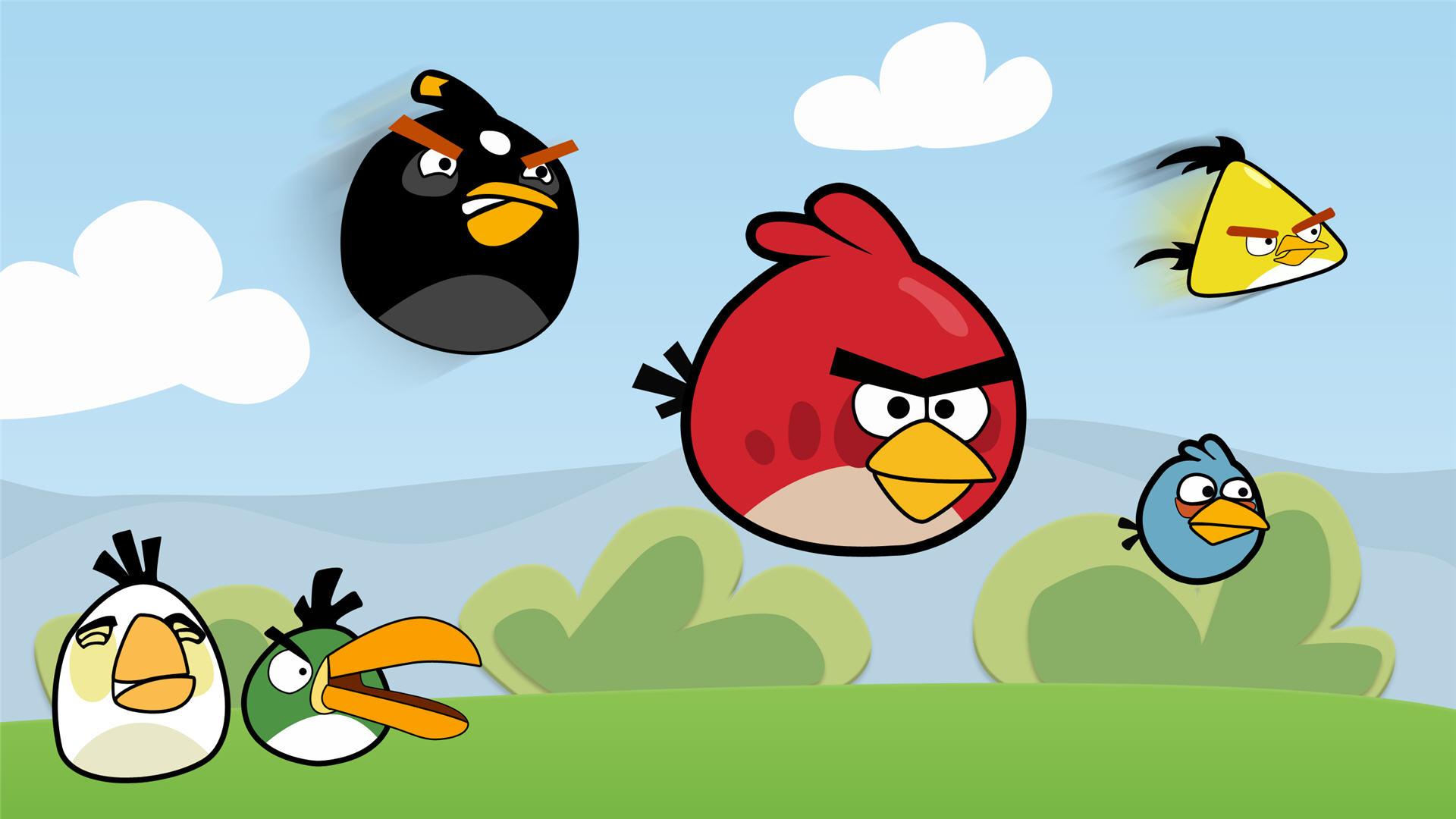 Hd Bird Live Wallpaper Background Angry Birds Hd 1920x1080 Wallpaper Teahub Io