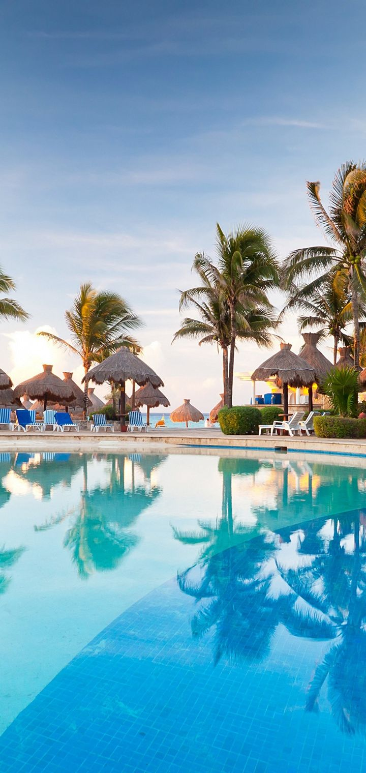 Palm Trees Resort Nature Tropical Pool Wallpaper 4k Ultra Hd Wallpaper Iphone 4k 720x1520 Wallpaper Teahub Io