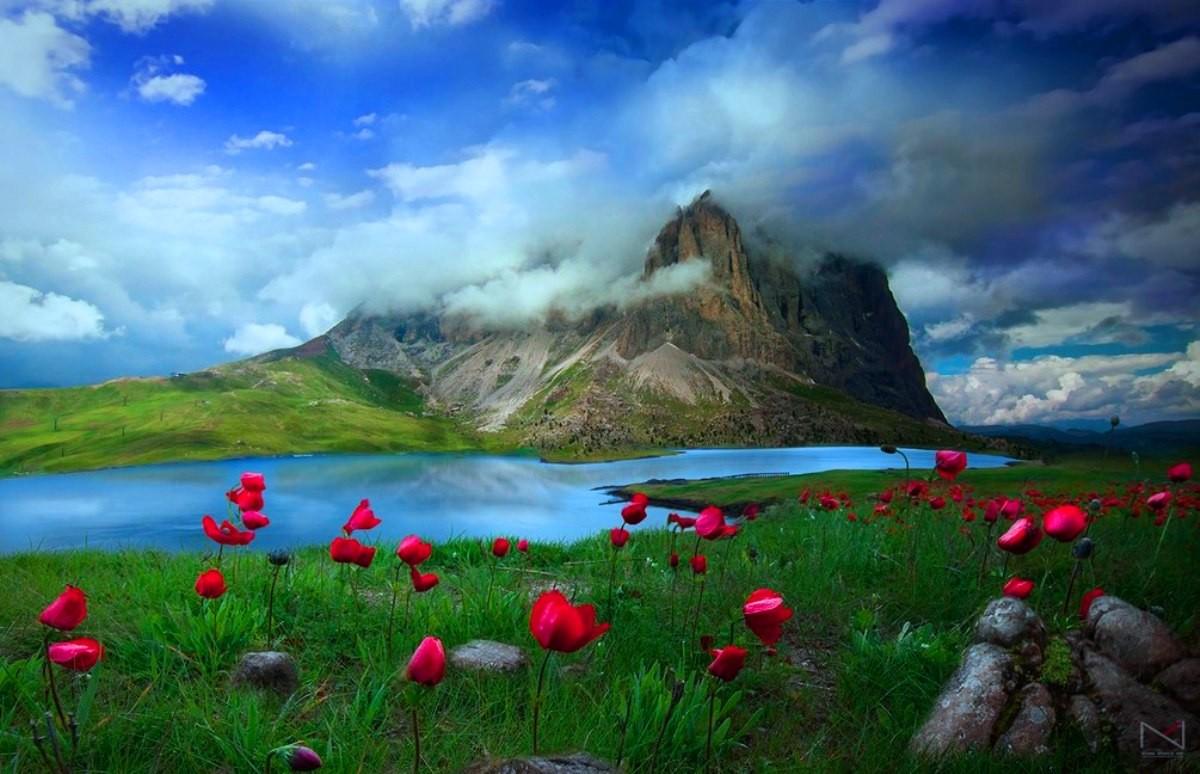 Hd Nature Wallpapers, Landscape, Natural Images, Windows - Windows 10 Nature Wallpaper Hd For Laptop - HD Wallpaper