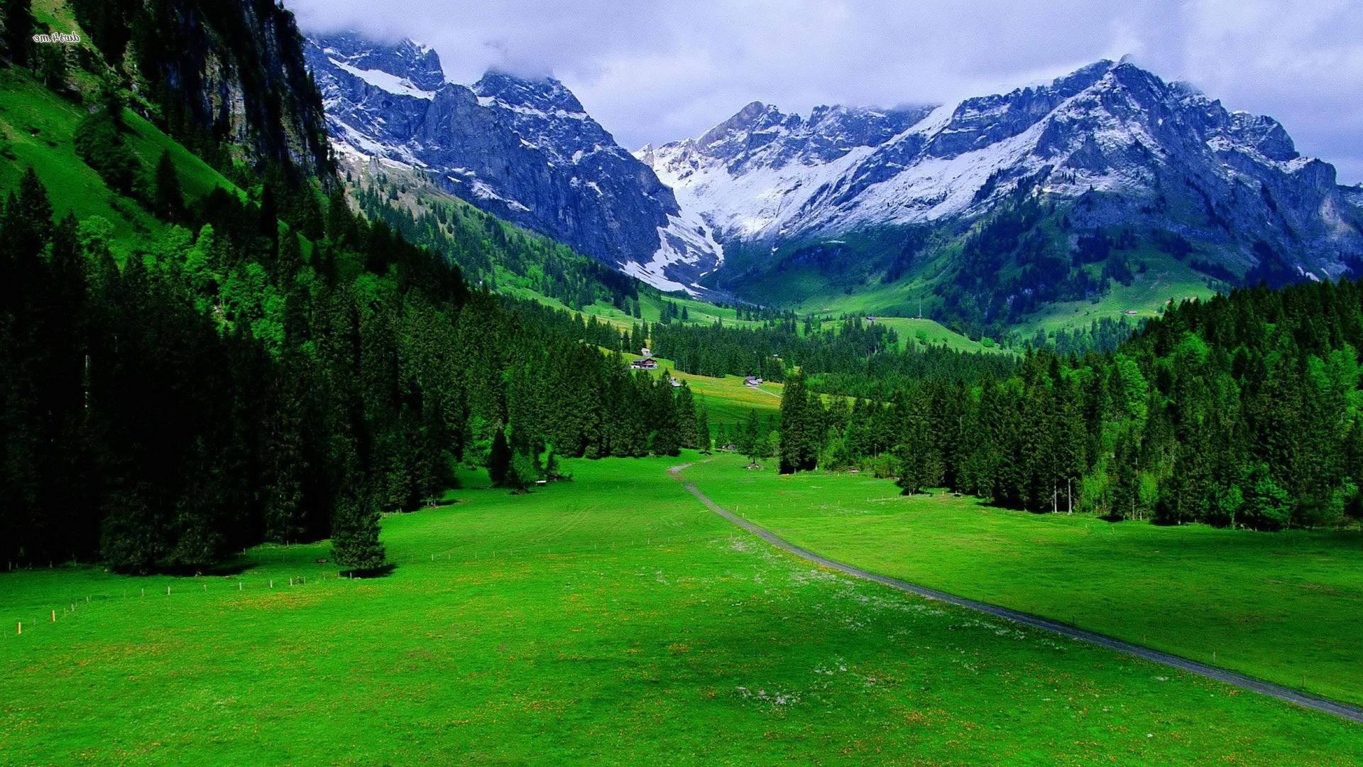 Mountain Nature Scenes - HD Wallpaper