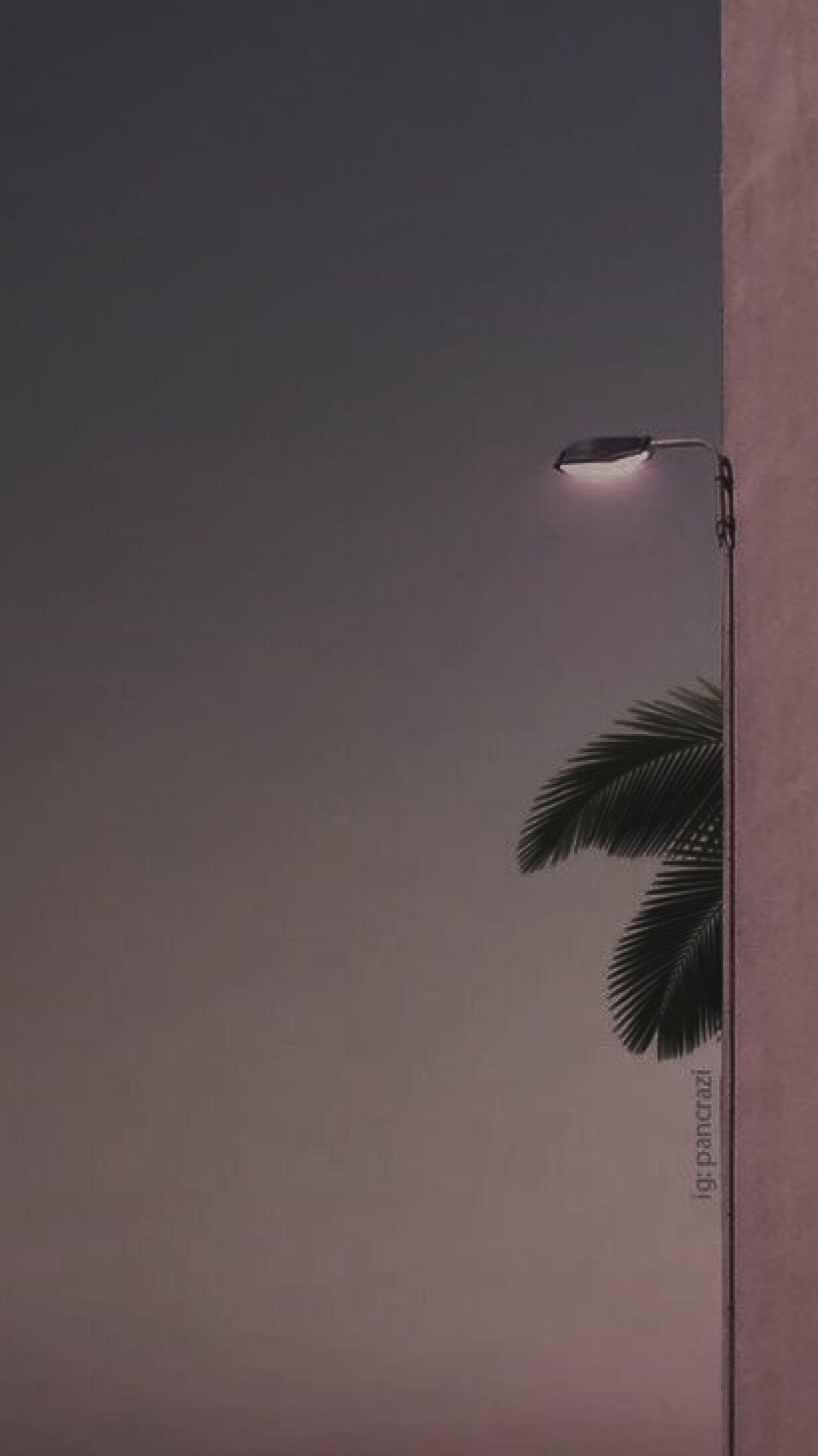 Iphone Aesthetic Wallpaper Hd - HD Wallpaper