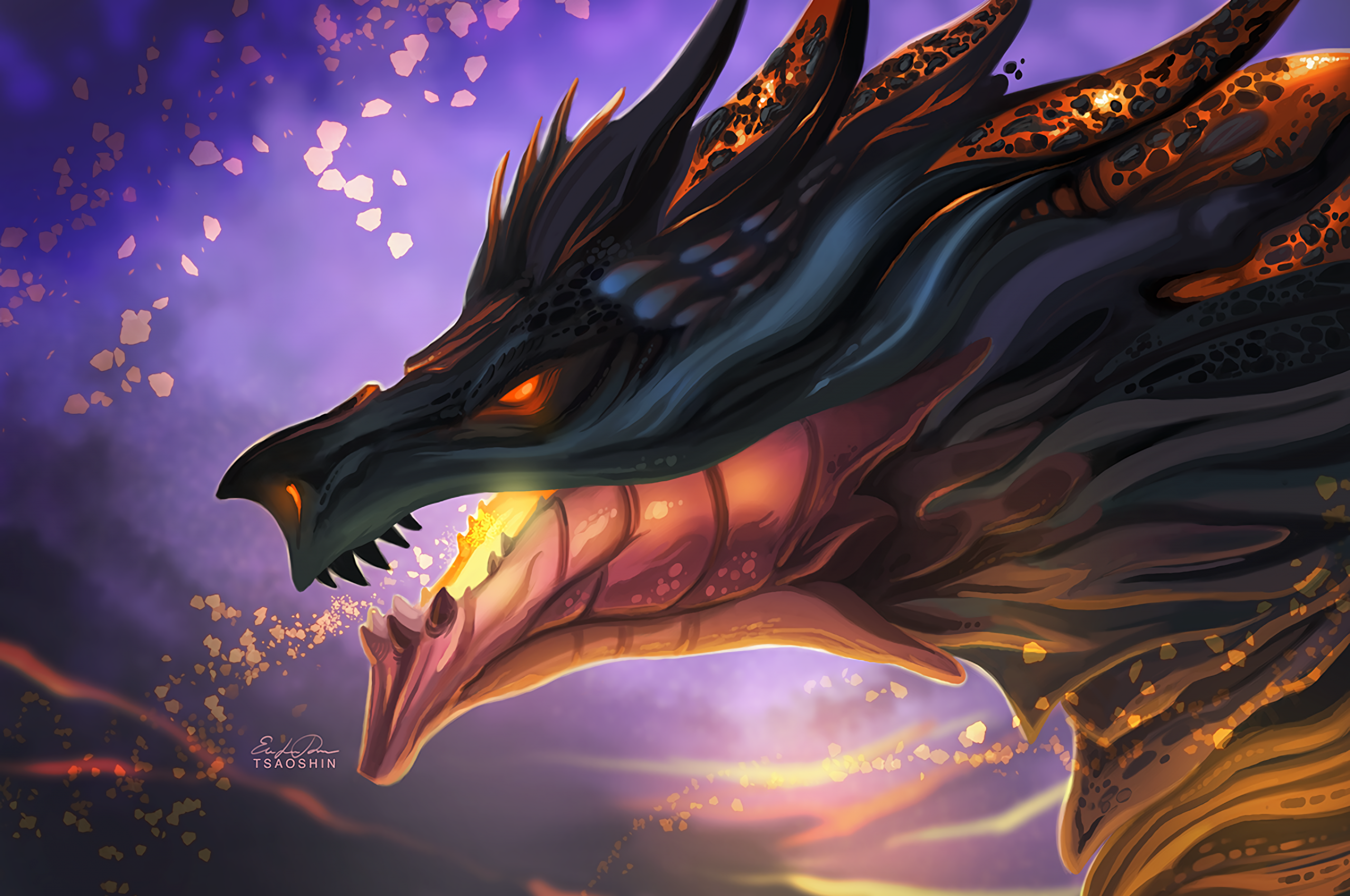 Dragon Fantasy Creatures Fire Profile View Cool Wallpapers For Chromebooks 2560x1700 Wallpaper Teahub Io
