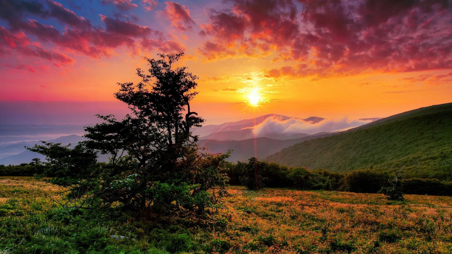 Hd Nature Wallpapers, Amazing Images, Natural, Cool, - Sunrise Nature Wallpaper Hd - HD Wallpaper