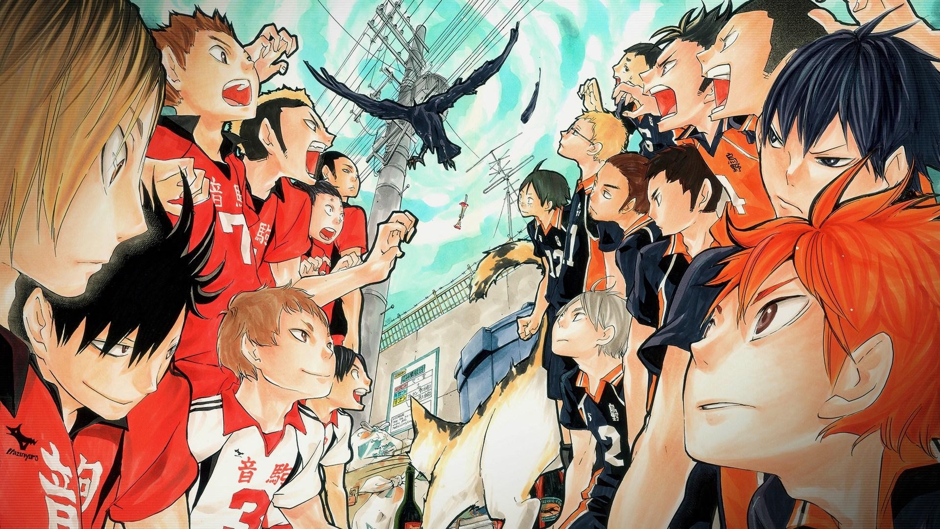 Haikyuu Karasuno Vs Nekoma - HD Wallpaper