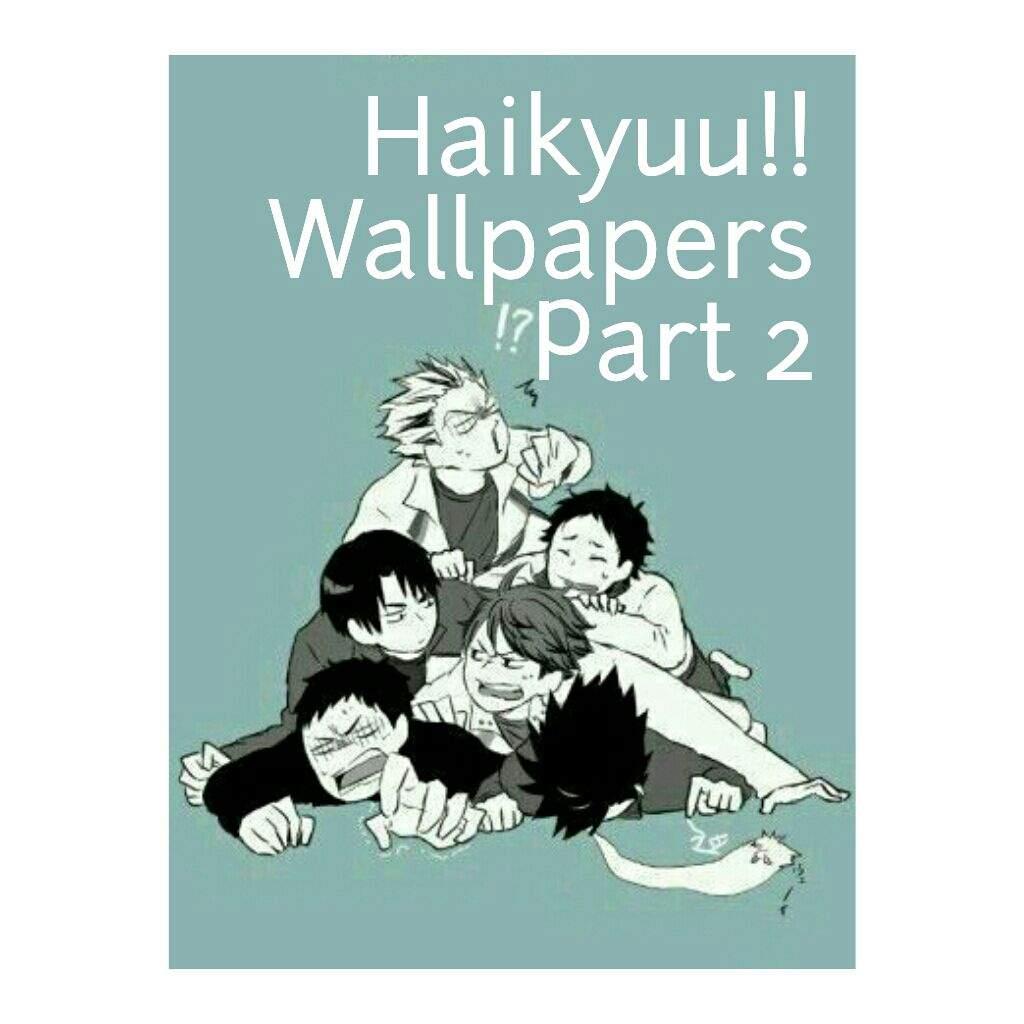 User Uploaded Image - Haikyuu Ushijima And Daichi - HD Wallpaper