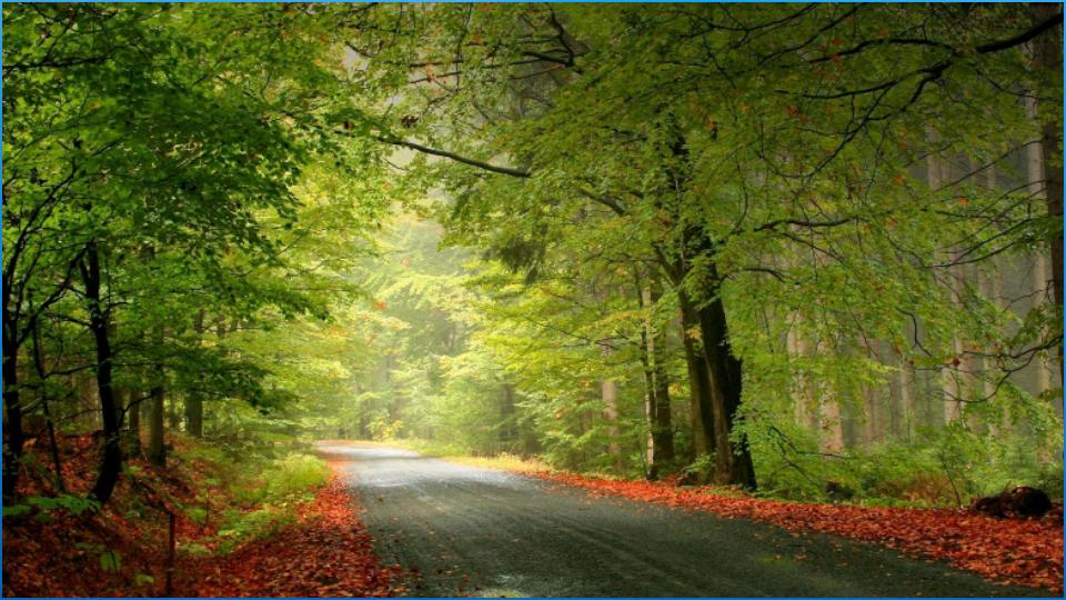 Best Nature Wallpapers - Best Natural Backgrounds - HD Wallpaper