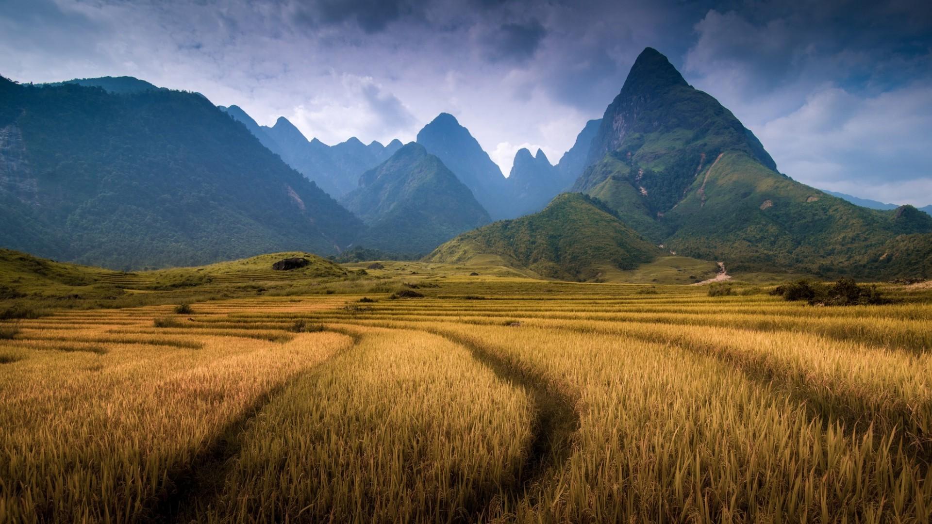 Nature Art Landscape Canvas Art Paintings Oil - HD Wallpaper