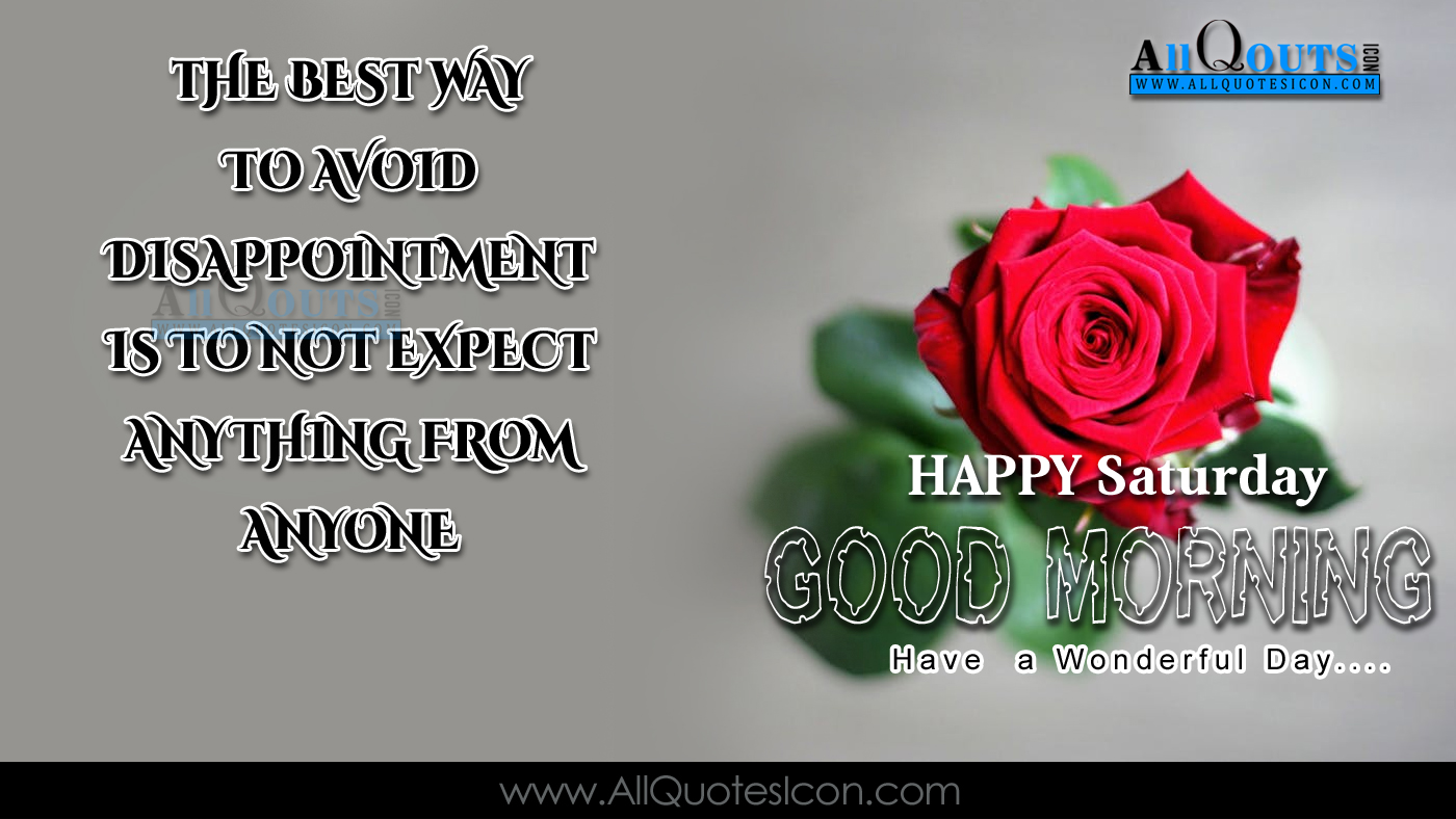 English Good Morning Quotes Wshes For Whatsapp Life - Garden Roses - HD Wallpaper