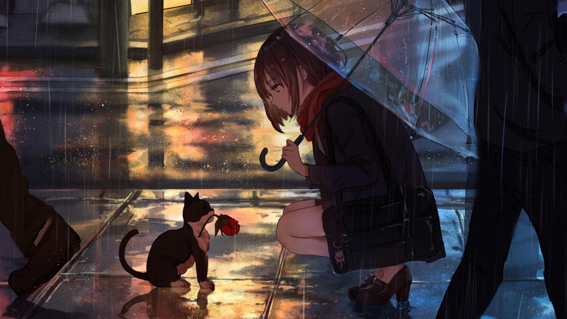 Wallpaper Girl, Kitten, Flower, Anime, Street, Rain - Anime Girl In The Rain - HD Wallpaper