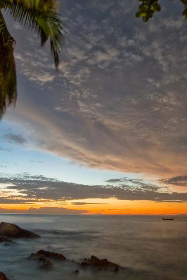 Palm Trees Sunset Iphone Wallpaper - Beach Palm Trees Dawn - HD Wallpaper