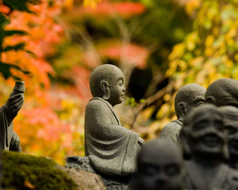 Zen Garden Wallpapers Picture For Free ...