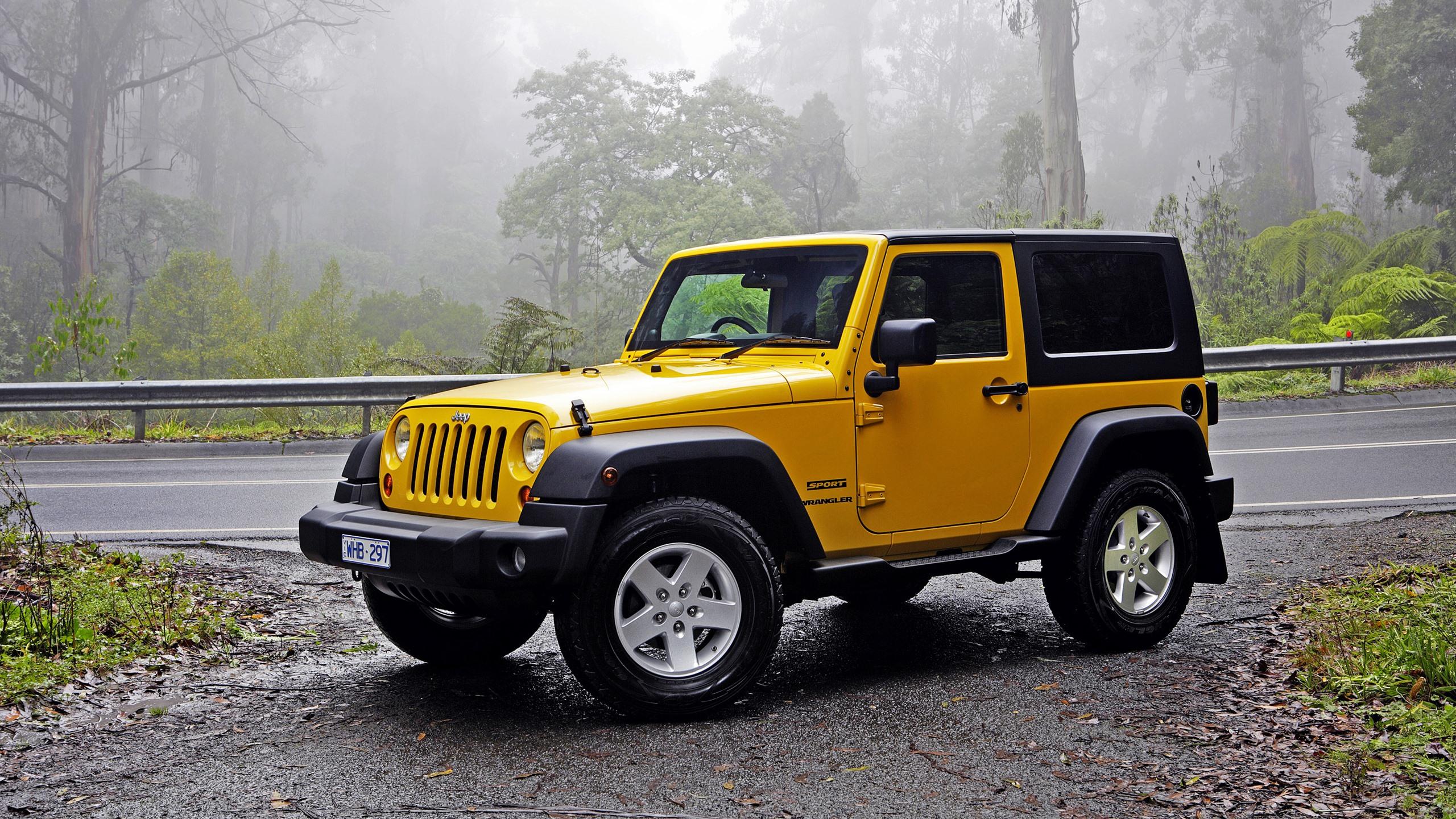 Yellow Jeep 2 Door 2560x1440 Wallpaper Teahub Io